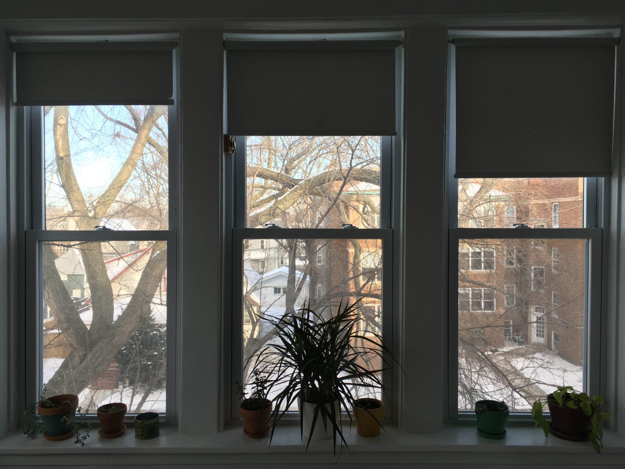 NYE2017-windows